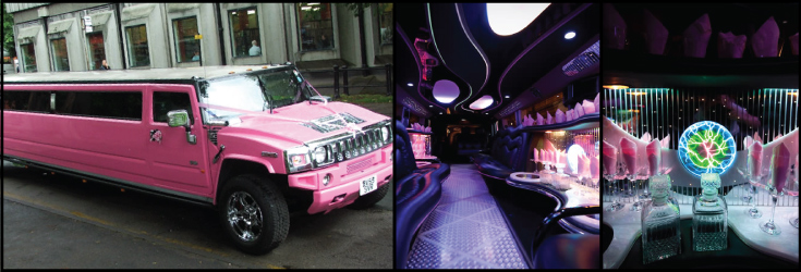 16 seater pink hummer